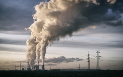 Climate Lawsuit In The Netherlands Looks To Accelerate Change