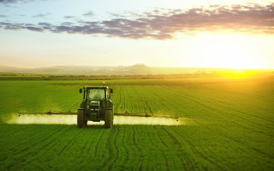 EPA's Decision on Chlorpyrifos: Impact on litigation