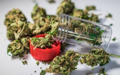 Cannabis Industry Needs To Heed Prop 65 In California